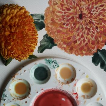 Bloomage_Daydream_orange_chrysanthemum