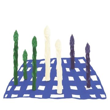 Asparagus layout square